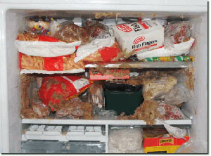 دانلود پاورپوینت روش های نگهداری مواد غذایی به وسیله سرما